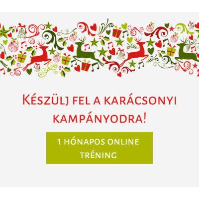Készülj fel a karácsonyi kampányodra! 1 hónapos online tréning