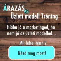 Árazás és Üzleti modell tréning